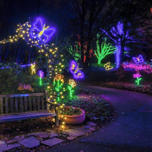 Meadowlark's Winter Walk of Lights